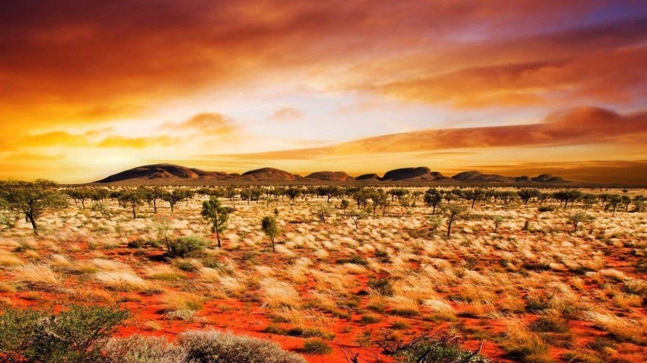 deserto do outback